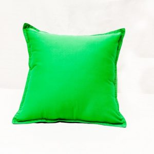 Washable Soft Cushion Green
